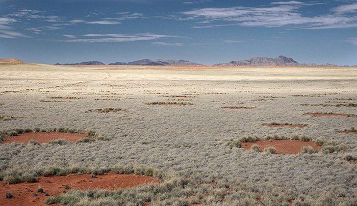 حلقه های اسرارآمیز نامیبیا ، تصاویر