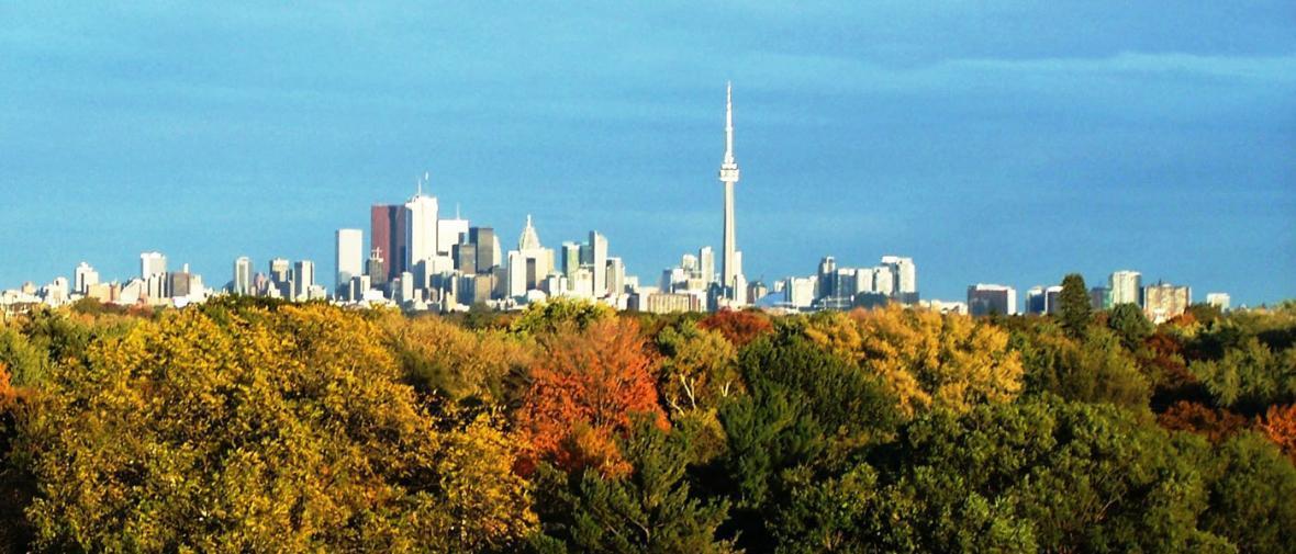 25 فعالیت رایگان برای بچه ها در تورنتو: قسمت دوم، فضای سبز