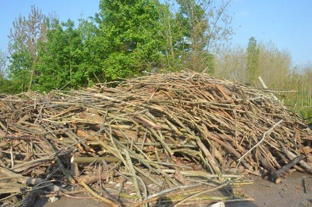 کشف 35 تن چوب جنگلی قاچاق در لنگرود