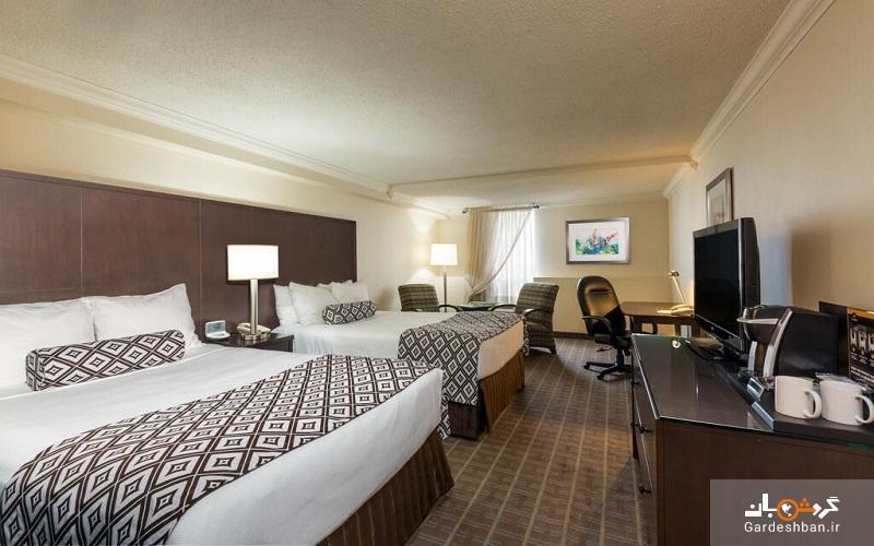 هتل 4 ستاره کراون پلازا در تورنتو، هتلی که با عشق از شما میزبانی می نماید، عکس