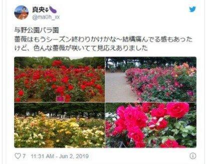 رُزهای قربانی کرونا در ژاپن!