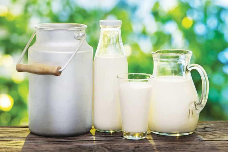 سم آفلاتوکسین در لبنیات؛ شیر بخوریم یا نخوریم؟
