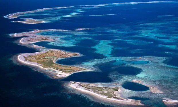 تغییر زنجیره غذایی اقیانوس ها در اثر گرمایش زمین