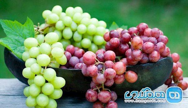 بعد از خوردن این میوه آب ننوشید!