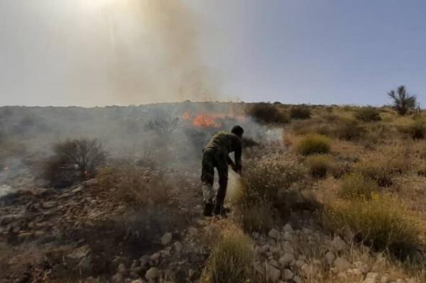 کنترل آتش سوزی در کردلان ، حریق به گنبد نمک نرسید!