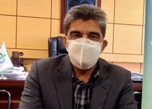 هیچگونه آلودگی در نان کرمانشاه مشاهده نشده است