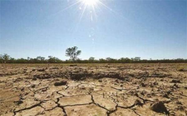 خشکسالی،67 هزار میلیارد تومان به کشاورزی خسارت وارد کرد