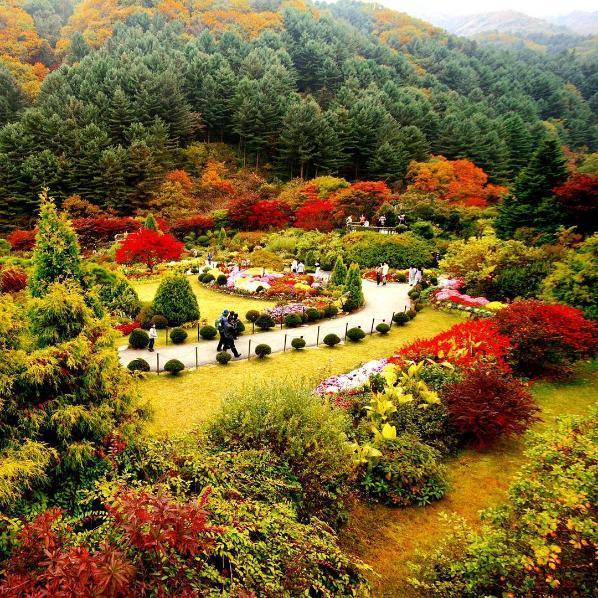 باغ های بوچارت ، بهشت بی نظیر کانادایی